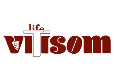 VITISOM LIFE