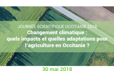 Climate change : what impacts, what adaptation options for agriculture in Occitanie ?