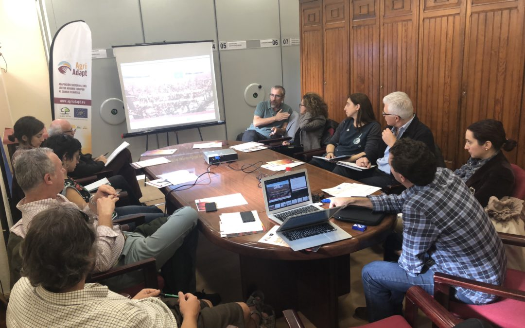 Meeting of the LIFE AgriAdapt Committee of Experts in Spain (30th of November, 2018)