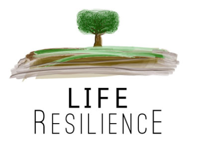 Life Resilience