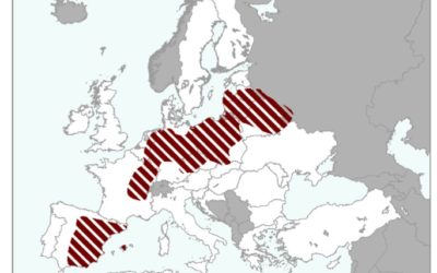 Des vagues de chaleur en Juin 2019 impactant l'Europe selon le JRC