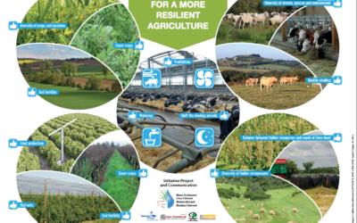 Two AgriAdapt educational posters on the impact of climate change in agriculture and the adaptation levers to be implemented